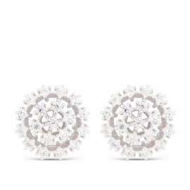 Earrings Eldy EQ11600